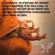 la patience n'est pas de résister jusqu'à exploser d'un seul coup...