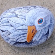 Comments comments #beachstone #bird #cobble...goose on stone...