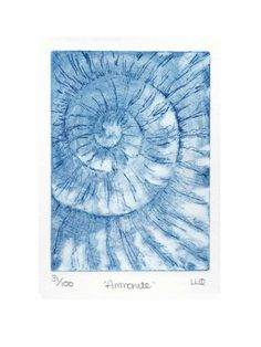 Etching no.31 of an ammonite fossil in an edition of 100 £30.00