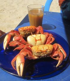 Crab on the Beach cooked in Broth (Fortaleza, Brasil)