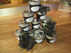 How to make Wild Grape Jelly: Recipe + Photos –