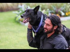 """Special Operations Canine """"Hurricane"""" Awarded PDSA Order Of Merit for Protecting Obamas. Fluffy Animals, Cute Animals, Order Of Merit, Emergency Response Team, Feel Good Stories, Cute Cats And Dogs, Secret Service, Picture Captions, Service Dogs"""