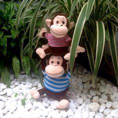Macacos Equilibristas