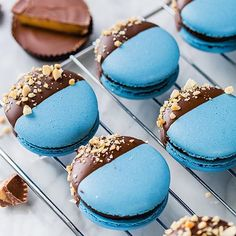 Amazing blue macarons by @ohsprinkles - Chocolate peanut macarons with Reese's peanut buttercup filling and dipped in chocolate #repost Find a recipe & step-by-step video showing how to make macarons at @bbcgoodfood online by bbcgoodfood