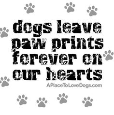 31 Best Dog Slogans images in 2013 | Dog quotes, I love dogs