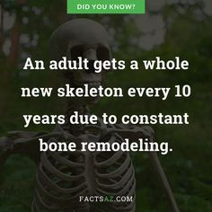 Discover 16 true facts about Human body. Curiosities about Human body that are real, even if they are weird or funny. Human Body Bones, Human Body Facts, Jamaica Facts, Human Tongue, Facts About Humans, Blood Vessels, True Facts