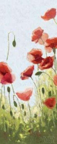 Mountain Poppies II - Wag Poster Print by Shirley Novak (10 x 20)