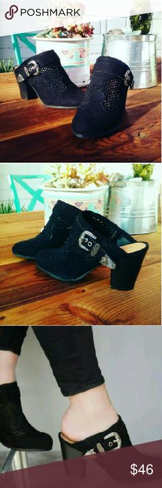 //The Willow// Black Buckled Mules Brand new Never been worn  Comes in original box No trades Many more sizes Available  Price is Firm!! Shoes Mules & Clogs