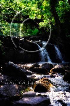 Fairy land  www.framcaphotography.com