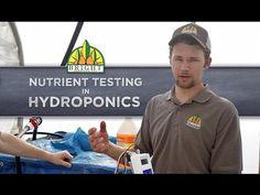 Testing Hydroponics Nutrients - YouTube
