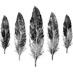 Black and White Feather wall art Feather Watercolor Feather prints... ($20) ❤ liked on Polyvore featuring home, home decor and wall art
