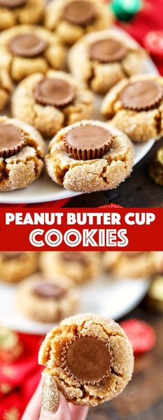 Peanut Butter Cup Cookies - soft peanut butter cookies topped with a delicious Reese& peanut butter cup. Just 5 ingredient! Peanut Butter Cup Cookies - soft peanut butter cookies topped with a delicious Reeses peanut butter cup. Just 5 ingredient! Peanut Butter Cups, Soft Peanut Butter Cookies, Chocolate Chip Shortbread Cookies, Toffee Cookies, Reese Cup Cookies, Peanut Cookies, Nutter Butter, Keto Cookies, Yummy Cookies