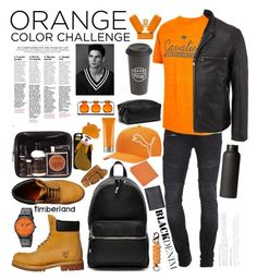 """Orange and black color challenge"" by my-majesty-sv ❤ liked on Polyvore featuring TIGHA, Andrew Marc, Timberland, MÃ«naji, Puma, Alexander Wang, Stefano Ricci, Bergè, Hollister Co. and Gucci"