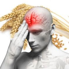 The Grain That Damages The Human Brain.   ..                                            I've been gluten-free for about 7 years now.