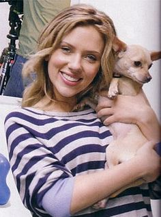 ca0f0cb24915 Scarlett Johansson was spotted with her Chihuahua Female Actresses, Actors  & Actresses, Chihuahua Love