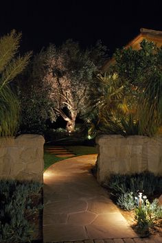 McKay Landscape Lighting offers professional outdoor and landscape lighting design, installation, and maintenance services for homes and businesses in Omaha, Nebraska and surrounding areas. Modern Landscape Lighting, Modern Landscape Design, Landscape Architecture, Pathway Lighting, Outdoor Lighting, Tree Lighting, Lighting Ideas, Modern Landscaping, Outdoor Landscaping