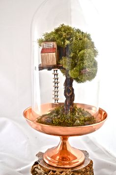 Tree terrarium beautiful live moss terrarium hand by UniqueLeeArt, $60.00