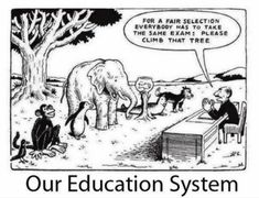 Our education system... Please read the article attached to this pin
