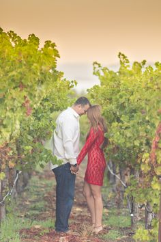 Romantic Sunrise Vineyard Engagement Session   Photo by Shelby Oliver   Aisle Perfect   http://aisleperfect.com/2015/11/romantic-sunrise-vineyard-engagement-session.html #engagement #photography