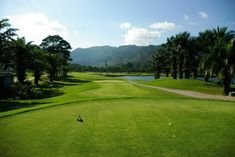 Find A Good Deal At #LochPalmGolfCourse http://phuketgolf.livejournal.com/8891.html