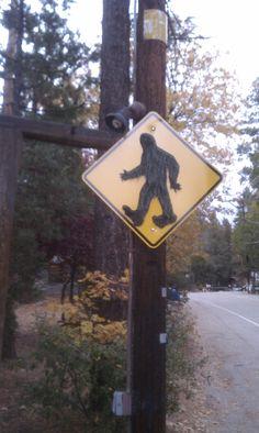 Big Foot Crossing. for Kerri:)