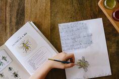 homeschooling | recent work