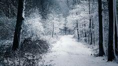 Winter - Listen To God by Thinking-Silence on deviantART