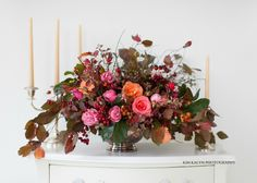 Fall Flowers   claredayflowers.ca