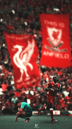 Liverpool Anfield, Liverpool Players, Liverpool Fans, Manchester United Football, Liverpool Football Club, Lfc Wallpaper, Liverpool Fc Wallpaper, Liverpool Wallpapers, Premier League