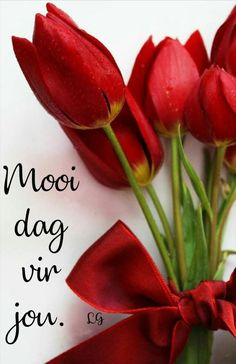 Morning Blessings, Good Morning Wishes, Day Wishes, Good Morning Quotes, Lekker Dag, Evening Greetings, Afrikaanse Quotes, Goeie More, Special Quotes