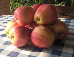 Two Busy Beez: La regina delle torte di mele: Apple Pie!