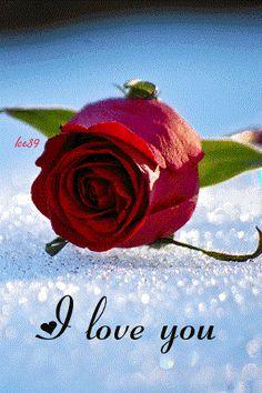 Tony Garal                   (Mis Poesias): POESÍA NÚM.0027.14 A UNA MUJER-09 (FUSIÓN-02)