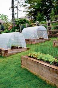 Great idea for early planting in raised beds - concrere mesh and poly to cover turns it into a mini greenhouse