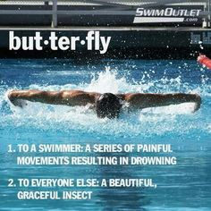 Sport quotes funny swim team The Effective Pictures We Offer You About Water sports pictures A quali Swimming Funny, Swimming Memes, I Love Swimming, Swimming Diving, Funny Swimming Quotes, Scuba Diving, Swimming Sport, Michael Phelps, Swim Team Quotes