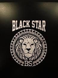 Image result for black star logo Marcus Garvey, Star Logo, Black Star, Symbols, Stars, Key, Image, Unique Key, Sterne
