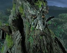 GC1ETAN Waldgeist, Wood Spirits & Green Men (Traditional Cache) in Indiana, United States created by Eye of the Pirate