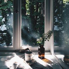 light photography window analogue inspiration
