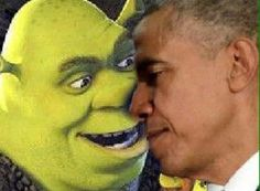 Shrek Memes, Dankest Memes, Meme Meme, Haha Funny, Lol, Cool Pictures, Funny Pictures, Quality Memes, Cursed Images