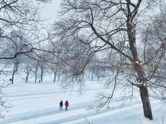 Top 20 Best Outdoor Winter Activities For You &a Your Family
