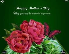 Mary Martindale Lindsey  Happy Mother's Day  May this day remain to be as special as you are.  Love,  Timmy