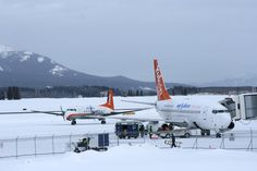 Air North and Boeing 737 Air North, Aircraft Images, Spacecraft, Regional, Airplanes, Aviation, Past, Commercial, Canada