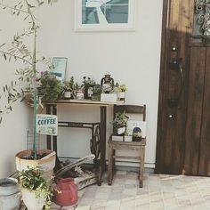 女性で、の玄関ポーチ/ミシン台/オリーブ/多肉植物/玄関/アンティーク…などについてのインテリア実例を紹介。(この写真は 2015-09-15 20:33:22 に共有されました)