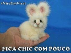 #VireUmViral (em FICA CHIC COM POUCO)