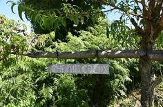 Chemin creux de la Croix-Bara (Saint-Mars-la-Réorthe)