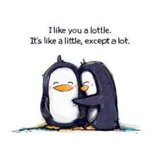Penguins - always make me smile remind me of my own little penguin!