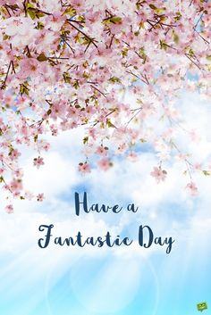 Have a fantastic day.