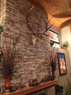 Elk European Mount from Cast Horn Designs
