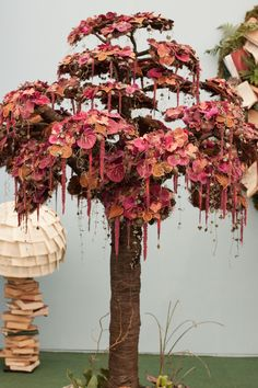 RHS Chelsea Flower Show 2015 - RHS Chelsea Florist of the Year Competition   Flowerona