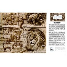 Leathercraft Library - African Animals by Al Stohlman (Series 4B Page 2)