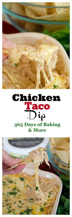 This Chicken Taco Dip with refried beans, chicken, @shamrockfarms   Zesty Jalapeño Sour Cream and cheese is a perfect addition to your Cinco De Mayo menu. #ad